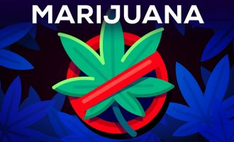 3 Arguments Why Marijuana Should Stay Illegal Reviewed 11