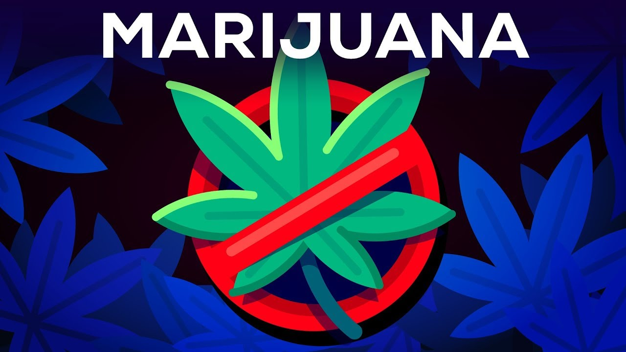 3 Arguments Why Marijuana Should Stay Illegal Reviewed 1