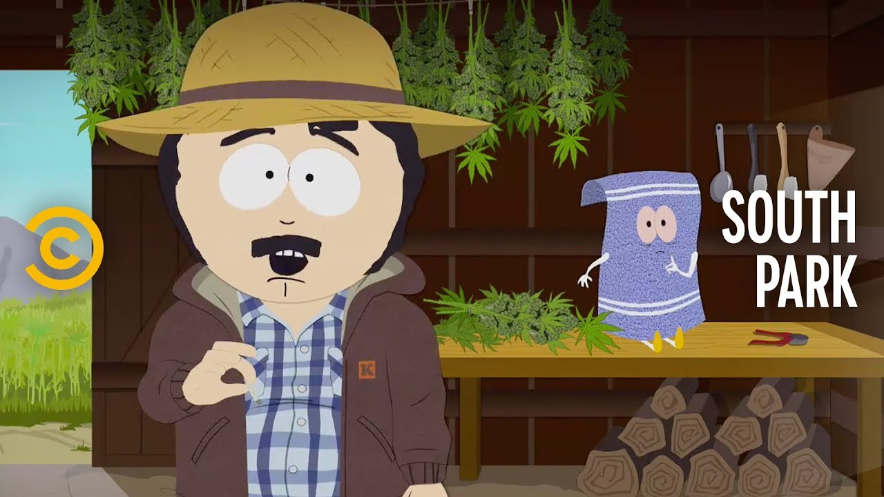 Randy and Towelie's Weed Farm Needs Help - South Park 1