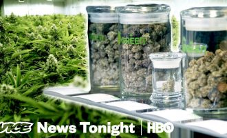 What Happens When A State Grows Way Too Much Weed (HBO) 12