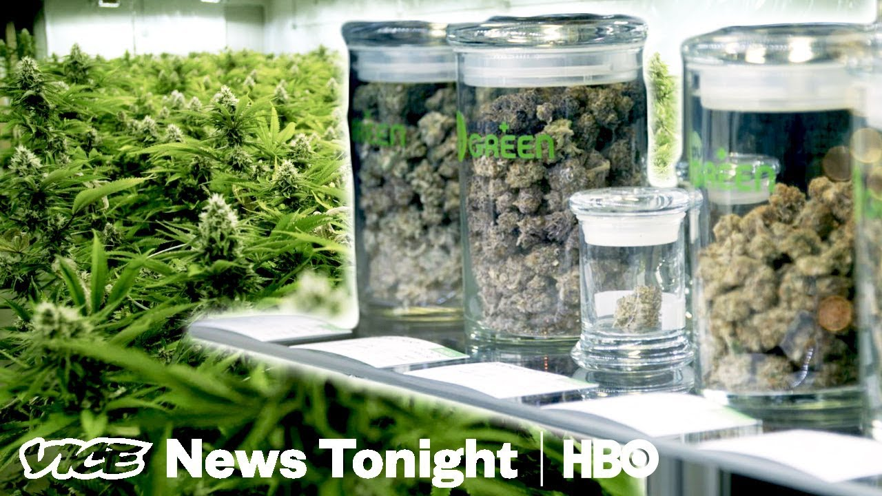 What Happens When A State Grows Way Too Much Weed (HBO) 1