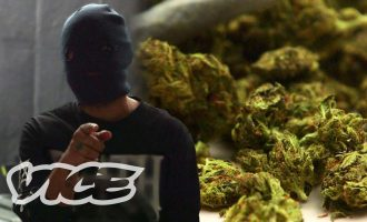 How to Treat Weed Dealers, According to a Weed Dealer 11