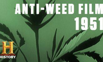 The Dangers of Marijuana Addiction (in 1951) | Flashback | History 10