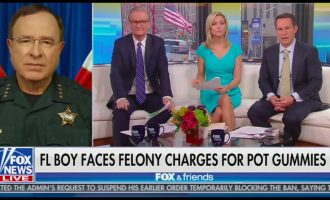 Fox News: Weed Is A Gateway To Meth 9