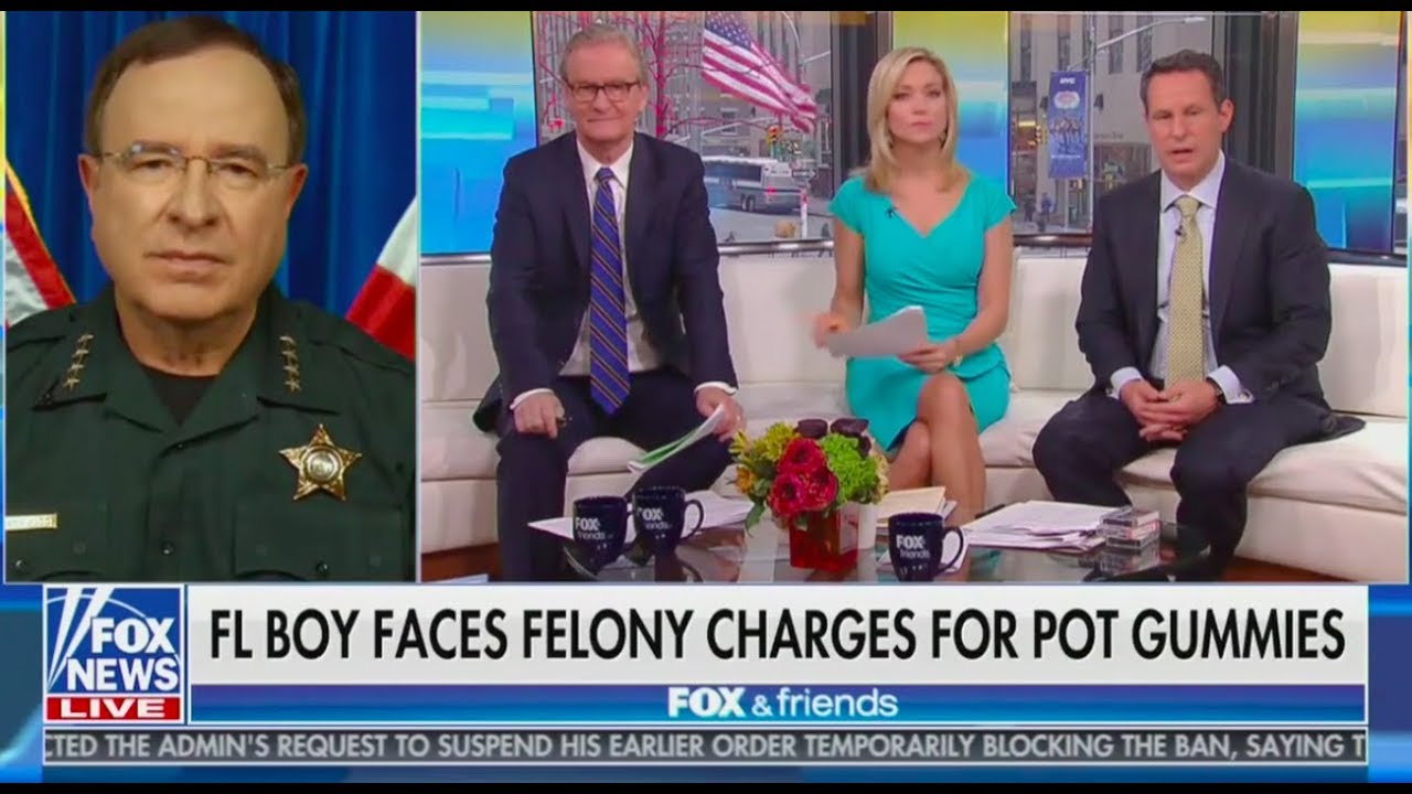 Fox News: Weed Is A Gateway To Meth 1