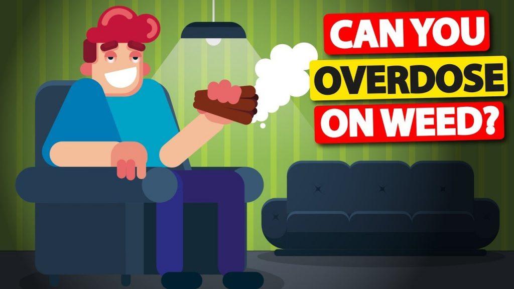 Can You Overdose On Weed Weedarlings
