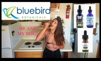 Bluebird Botanicals CBD oil review (for pets too) 8