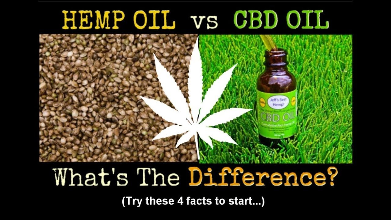 4 Key Differences Between Hemp Oil and CBD Oil 1
