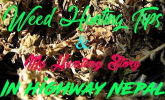 Weed Hunting Tips & My Hunting Story In Highway Nepal 9