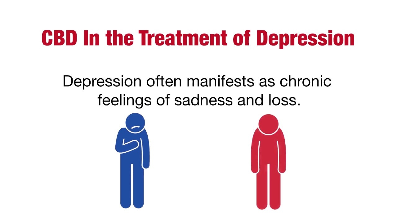 CBD In the Treatment of Depression - CBD Wellness Guide 1
