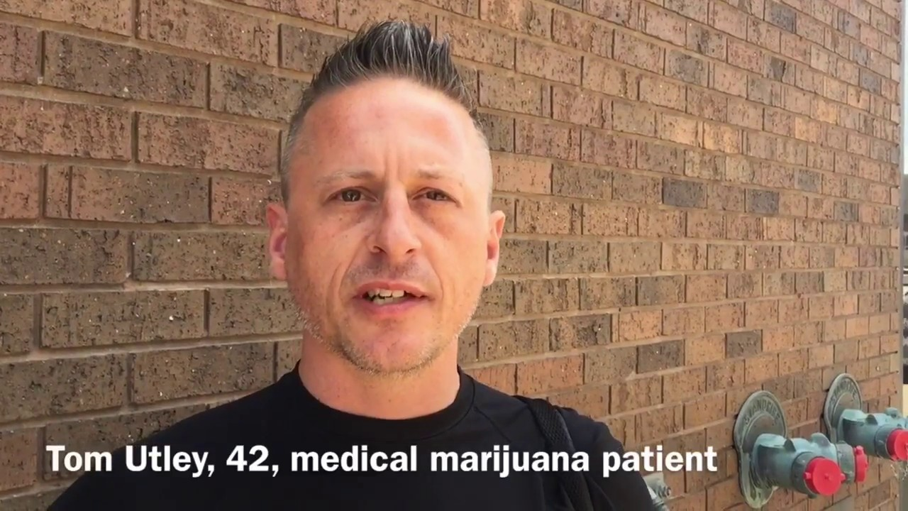 Medical marijuana's role in combating opioid abuse 1