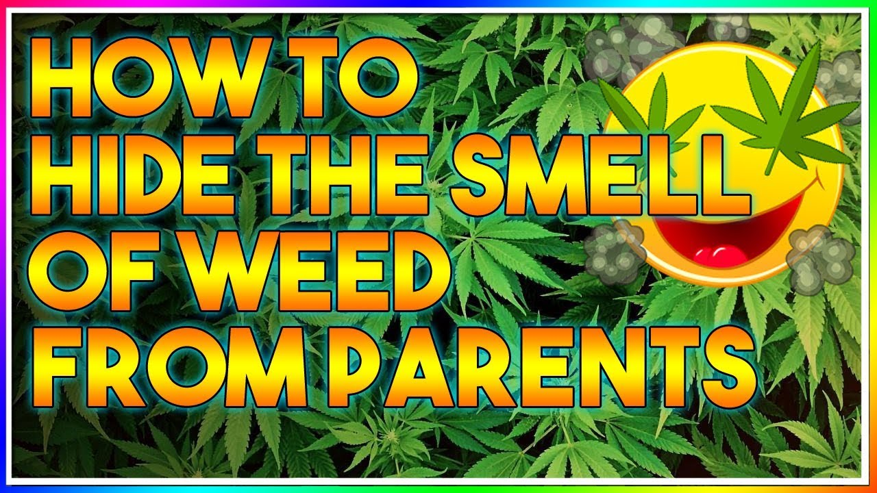 HOW TO HIDE THE SMELL OF WEED FROM PARENTS! (TIPS AND TRICKS) 1