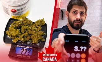 Weighing Legal Canadian Weed So That You Don't Get Screwed 1