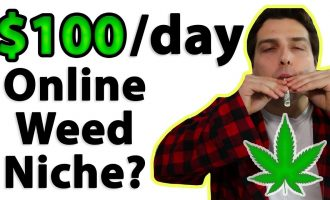 How to Make $100 a Day Online (Cannabis Niche Affiliate) 10