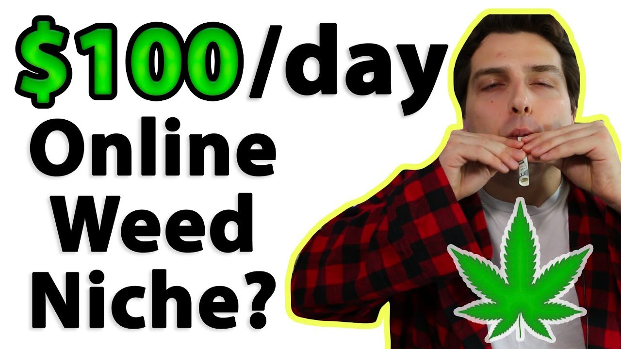 How to Make $100 a Day Online (Cannabis Niche Affiliate) 1