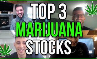 TOP 3 MARIJUANA STOCKS 2019 2