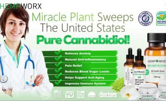 Doctors Review CBD Oil for Diabetes and how it can help! 13
