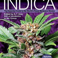Cannabis Indica: Volume 2. The Essential Guide to the World's Finest Marijuana S 1