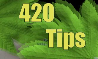 420 Tips * How to get rid of weed smoke / smell in the house * 6