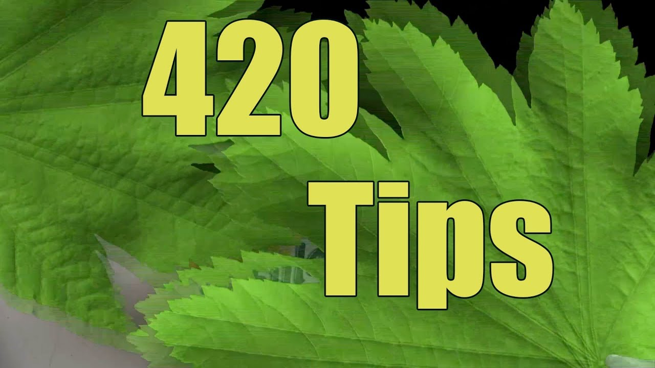420 Tips * How to get rid of weed smoke / smell in the house * 1