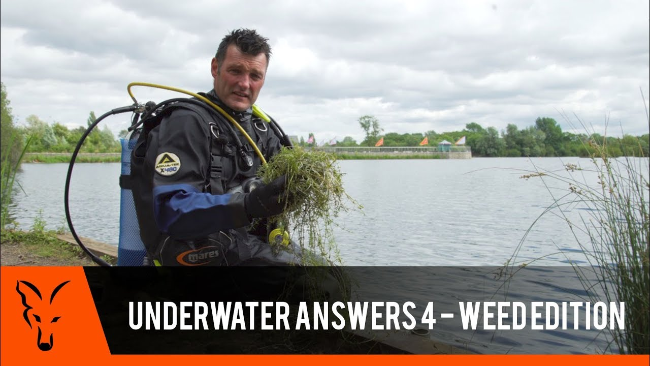 ***CARP FISHING TV*** Underwater Answers 4 - Weed Edition 1