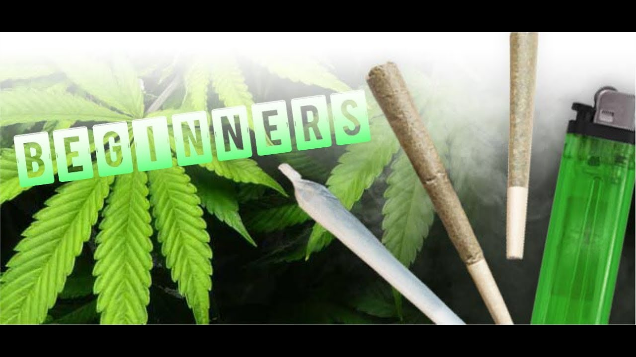 Beginners Guide to Smoking Weed 1