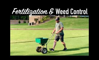 LAWN FERTILIZATION AND WEED CONTROL TIPS    The Southern Reel Mower 2