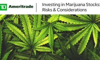Investing in Marijuana Stocks: Risks & Considerations 5