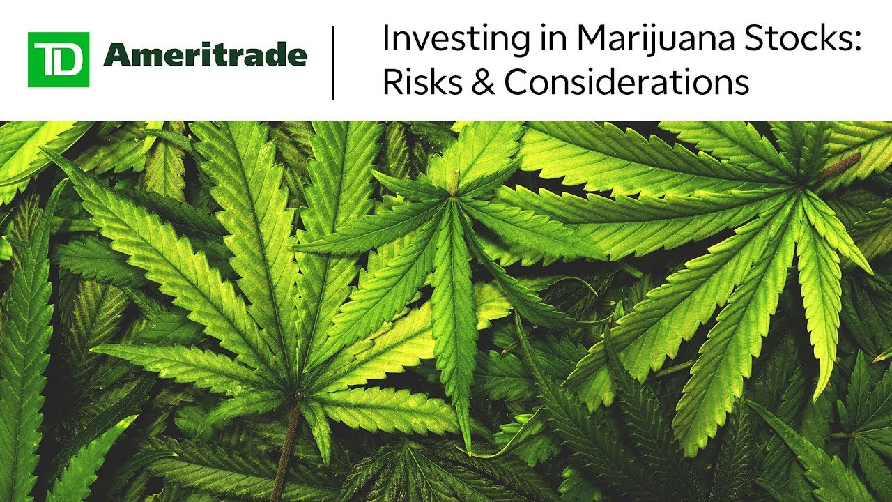 Investing in Marijuana Stocks: Risks & Considerations 1