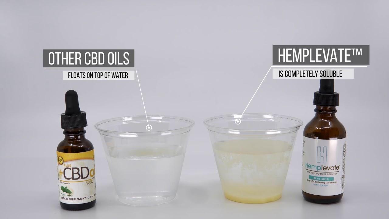 CBD Oil vs Hemplevate 1