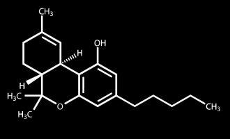 THC Molecule T-Shirt Weed science Pot Cannabis Legalise marijuana 5
