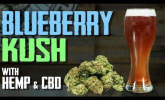 How to Brew Beer - CBD, Hemp, Blueberry Lager 6