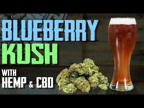 How to Brew Beer - CBD, Hemp, Blueberry Lager 1