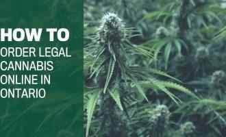 How to buy legal Ontario weed online in 7 steps 6