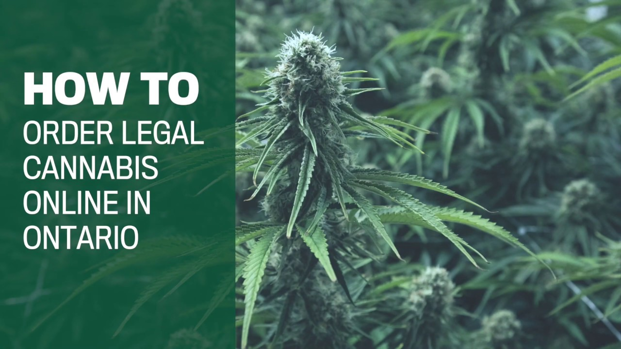 How to buy legal Ontario weed online in 7 steps 1