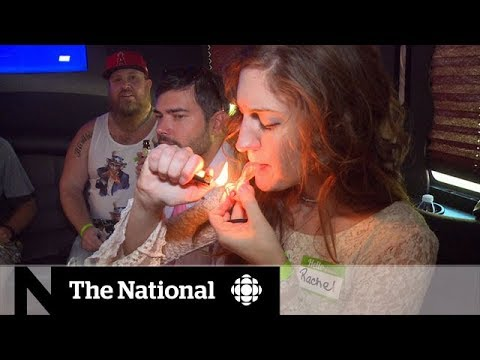 Future of marijuana in U.S. a hazy situation 1