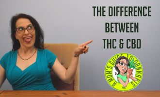 The Difference Between THC & CBD- A Mom's Guide To Cannabis Ep 3 7