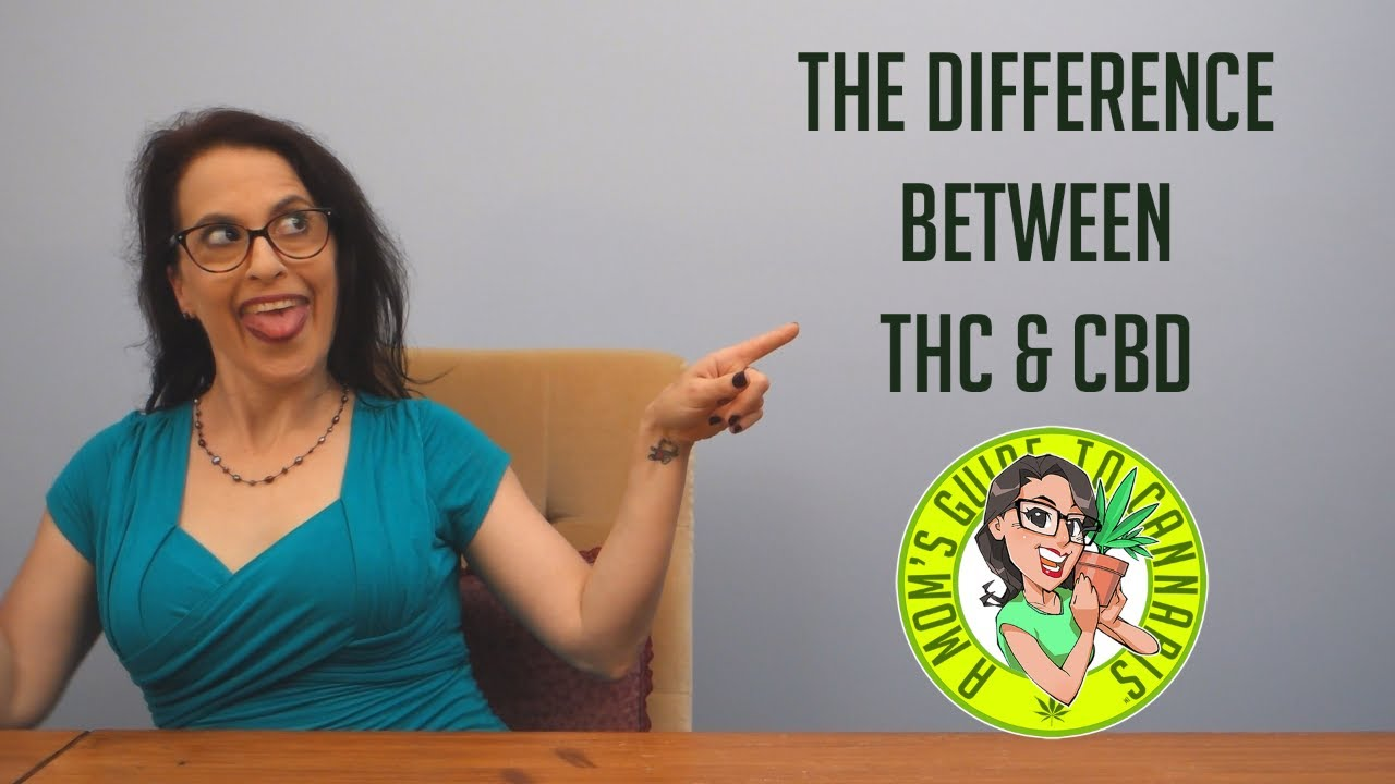 The Difference Between THC & CBD- A Mom's Guide To Cannabis Ep 3 1