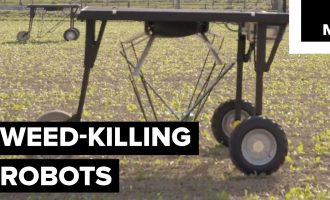 These Weed-killing Robots Could Give Big Agrochemical Companies A Run For Their Money 7