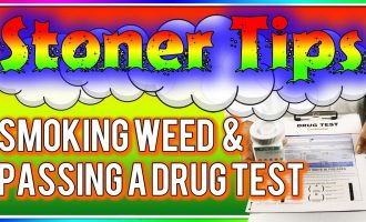 STONER TIPS #43: SMOKING WEED AND PASSING A DRUG TEST 6