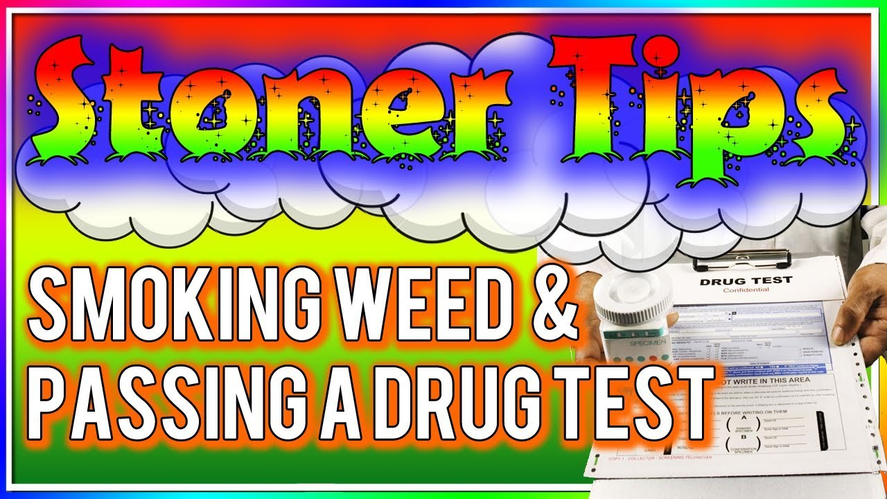 STONER TIPS #43: SMOKING WEED AND PASSING A DRUG TEST 1