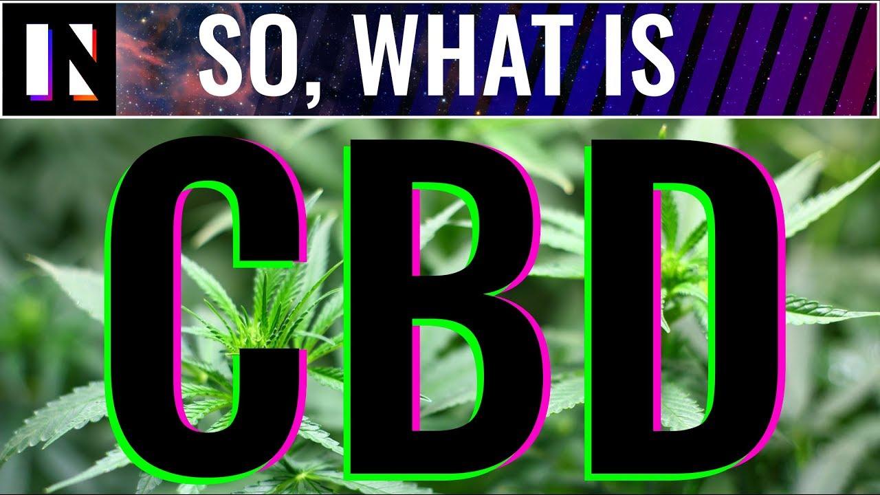 CBD Benefits Easily Explained | Inverse 1