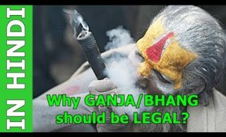 Why Marijuana, Ganja, Bhang, Weed should be Legalized in India - In Hindi 7