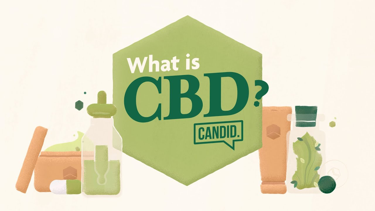 What Is CBD - Scientifically Explained how CBD oil Works, CBD benefits & the endocannabinoid system 1