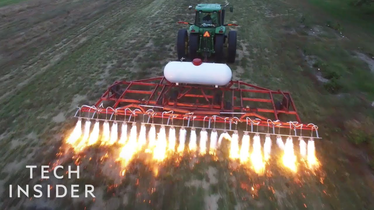 How These Flame-Throwing Tractors Kill Weeds 1