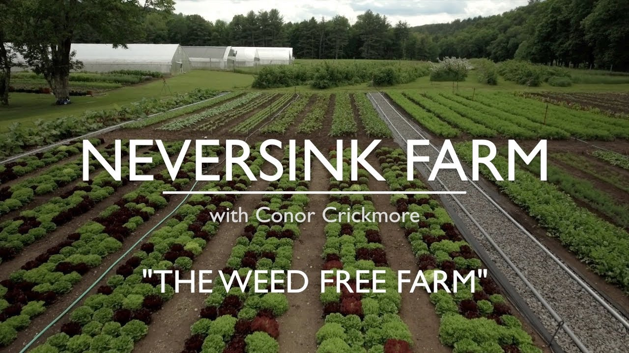 The Weed Free Farm and Garden - Part One 1