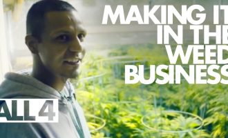 How People Make It In the Legal Weed Business 2