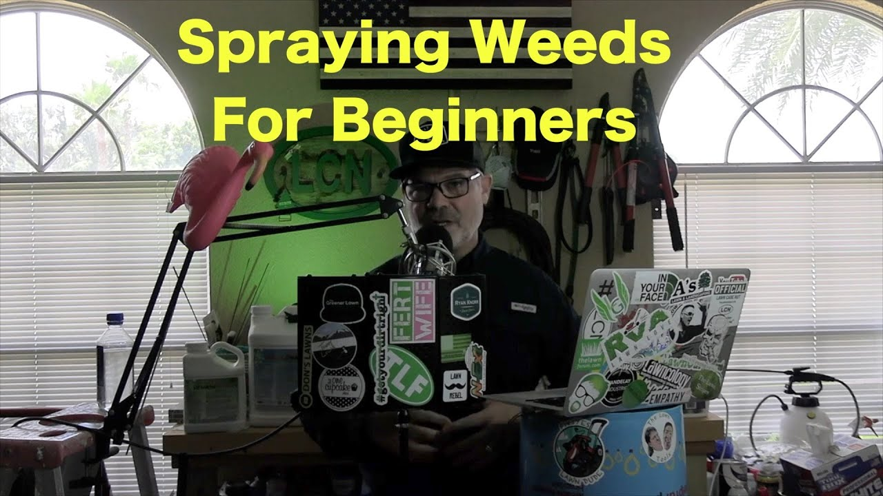 How to Spray Weeds | Beginner Weed Spraying Tips 1
