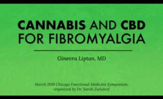 Cannabis and CBD for Fibromyalgia 13