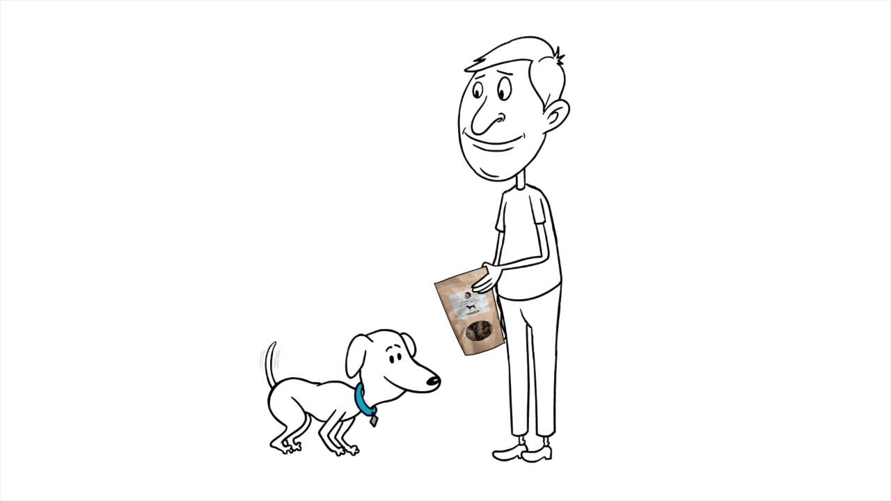SWELL CBD Animated Commercial-- CBD Dog Treats - Our (PCR) hemp oil is rich in (CBD) 1